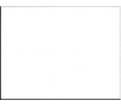 Пленка ПВХ (лайнер) RENOLIT ALKORPLAN 2000 1,5 мм. White белая